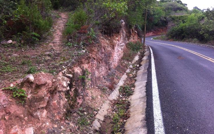 Foto de terreno comercial en venta en  , portezuelos uno (san andr?s), ixtapan de la sal, m?xico, 1246943 No. 03