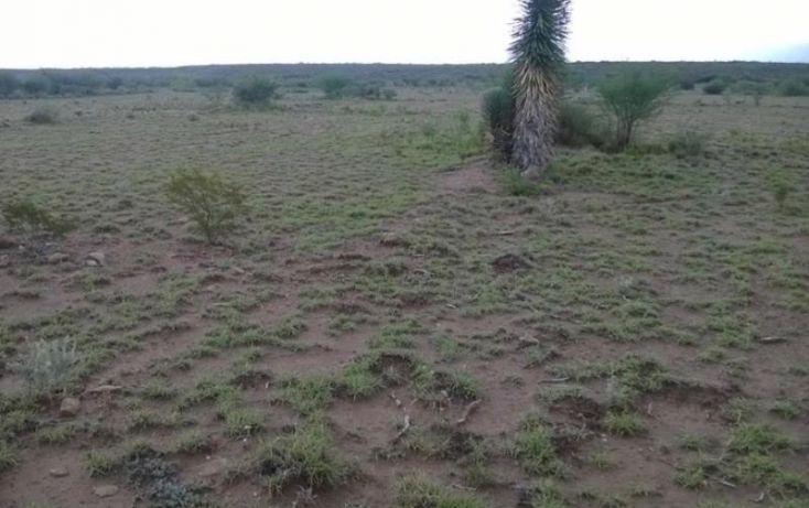 Foto de terreno habitacional en venta en potrerillo de las garzas, gral cepeda, general cepeda, coahuila de zaragoza, 375392 no 05