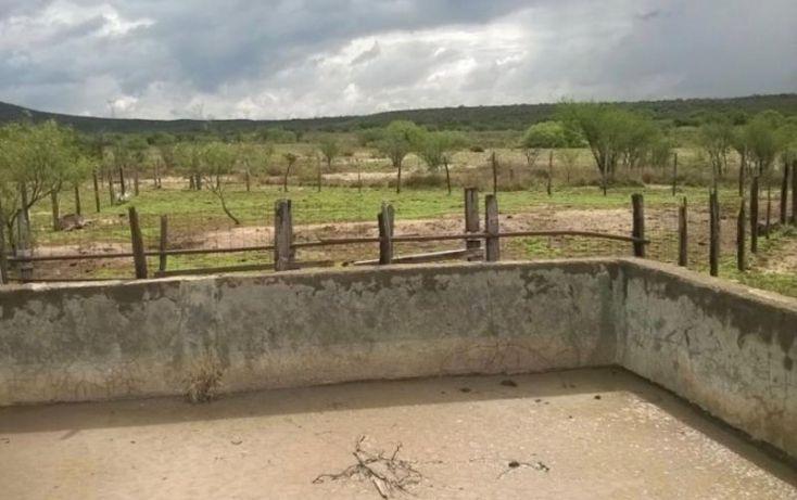 Foto de terreno habitacional en venta en potrerillo de las garzas, gral cepeda, general cepeda, coahuila de zaragoza, 375392 no 06