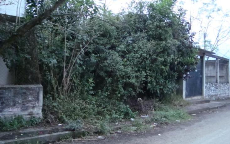 Foto de terreno habitacional en venta en  , potrerillo, ixtaczoquitlán, veracruz de ignacio de la llave, 615269 No. 05