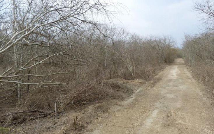 Foto de terreno habitacional en venta en potrero de limon, azalea, mazatlán, sinaloa, 2040092 no 01