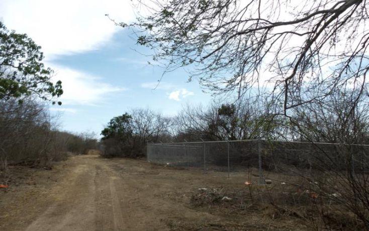 Foto de terreno habitacional en venta en potrero de limon, azalea, mazatlán, sinaloa, 2040092 no 05