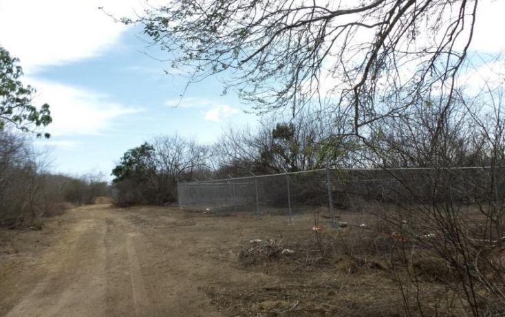 Foto de terreno habitacional en venta en potrero de limon, azalea, mazatlán, sinaloa, 2040092 no 11