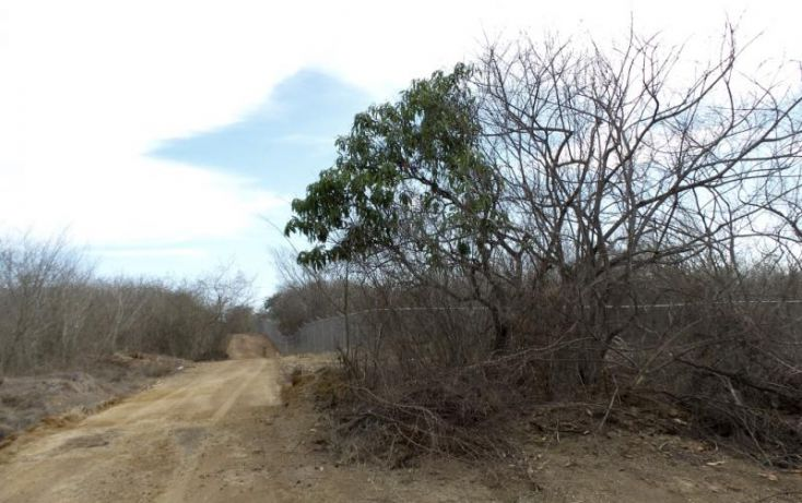 Foto de terreno habitacional en venta en potrero de limon, azalea, mazatlán, sinaloa, 2040092 no 12