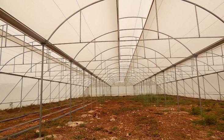 Foto de terreno comercial en venta en, poxila, umán, yucatán, 1291113 no 01