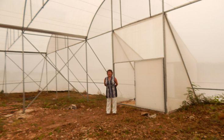 Foto de terreno comercial en venta en, poxila, umán, yucatán, 1291113 no 03