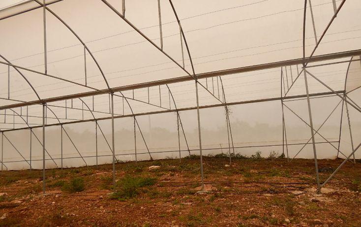 Foto de terreno comercial en venta en, poxila, umán, yucatán, 1291113 no 04