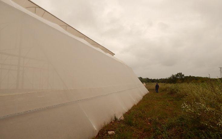 Foto de terreno comercial en venta en, poxila, umán, yucatán, 1291113 no 08