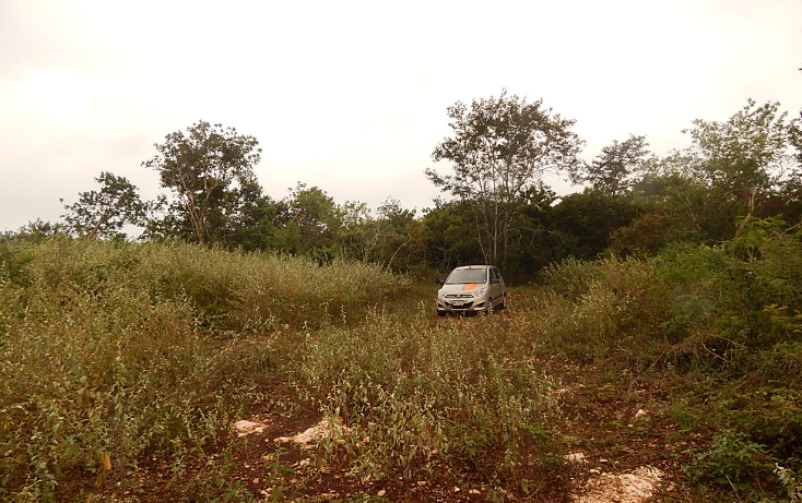 Foto de terreno comercial en venta en  , poxila, umán, yucatán, 1291113 No. 15
