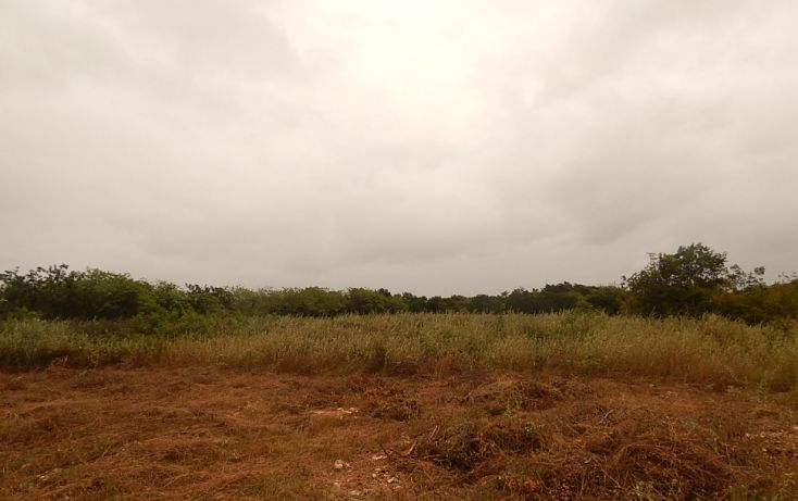 Foto de terreno comercial en venta en, poxila, umán, yucatán, 1291113 no 18