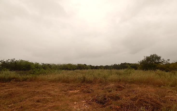 Foto de terreno comercial en venta en  , poxila, umán, yucatán, 1291113 No. 18