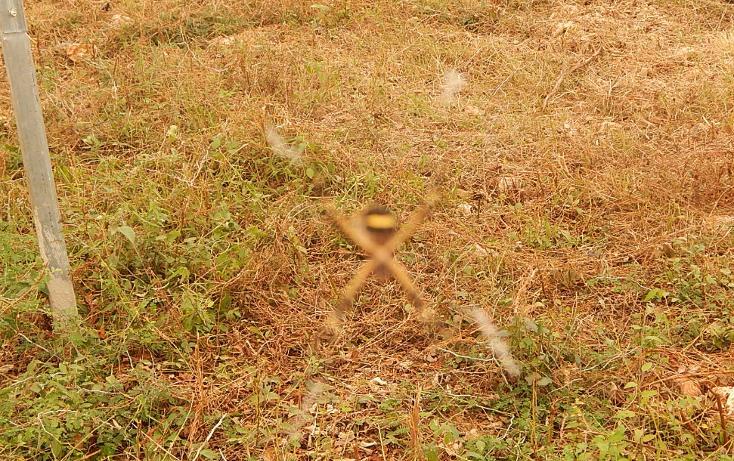 Foto de terreno comercial en venta en  , poxila, umán, yucatán, 1291113 No. 19