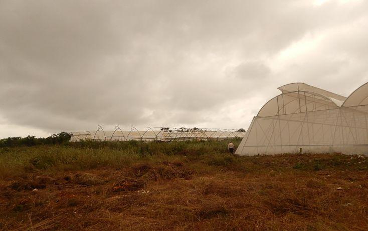 Foto de terreno comercial en venta en, poxila, umán, yucatán, 1291113 no 20