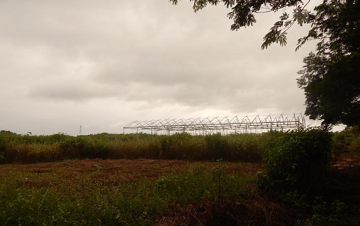 Foto de terreno comercial en venta en  , poxila, umán, yucatán, 1291113 No. 22