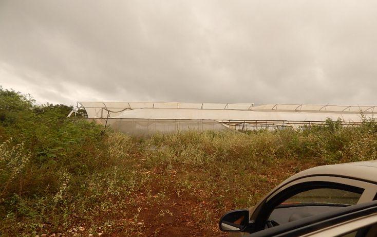 Foto de terreno comercial en venta en, poxila, umán, yucatán, 1291113 no 25