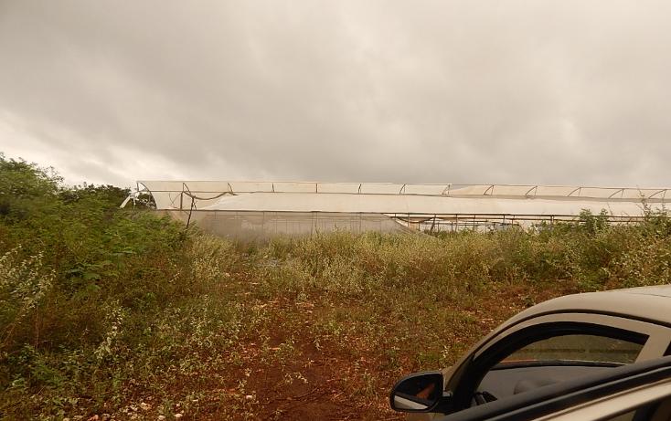 Foto de terreno comercial en venta en  , poxila, umán, yucatán, 1291113 No. 25