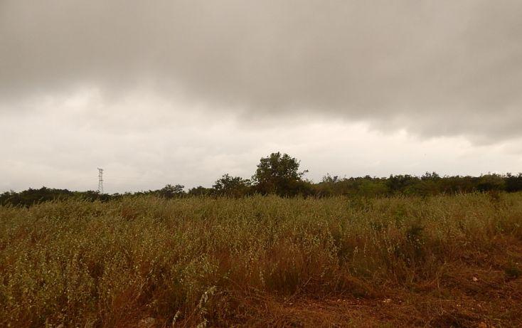 Foto de terreno comercial en venta en, poxila, umán, yucatán, 1291113 no 26