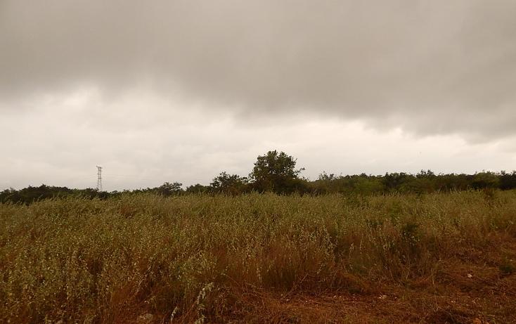 Foto de terreno comercial en venta en  , poxila, umán, yucatán, 1291113 No. 26
