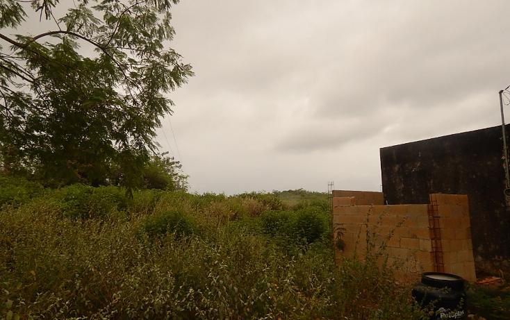 Foto de terreno comercial en venta en  , poxila, umán, yucatán, 1291113 No. 27