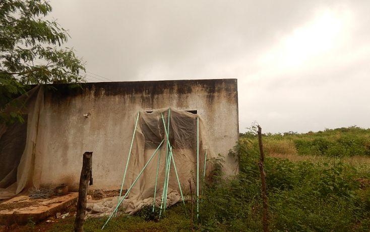 Foto de terreno comercial en venta en, poxila, umán, yucatán, 1291113 no 30