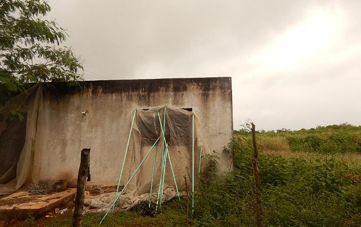 Foto de terreno comercial en venta en  , poxila, umán, yucatán, 1291113 No. 30