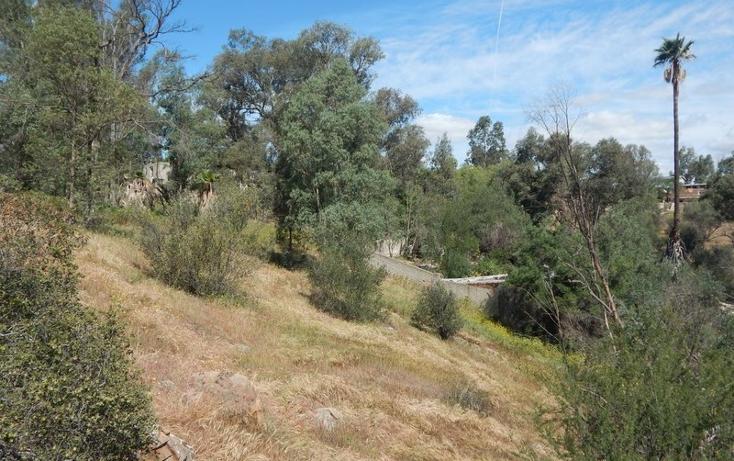 Foto de terreno comercial en renta en  , praderas de la mesa sección valle de las flores, tijuana, baja california, 1344093 No. 05