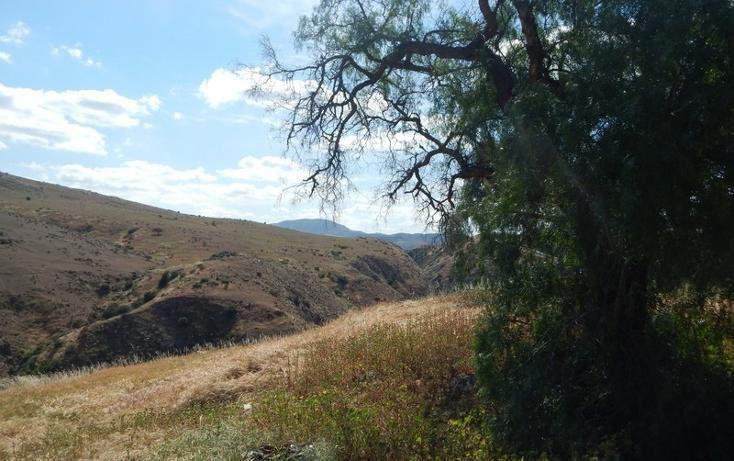 Foto de terreno comercial en renta en  , praderas de la mesa sección valle de las flores, tijuana, baja california, 1344093 No. 12