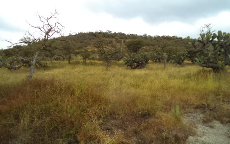 Foto de terreno habitacional en venta en  , praderas, tepeji del r?o de ocampo, hidalgo, 1446301 No. 01