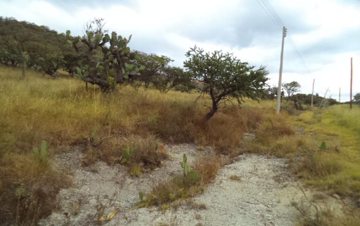 Foto de terreno habitacional en venta en  , praderas, tepeji del río de ocampo, hidalgo, 1446301 No. 02
