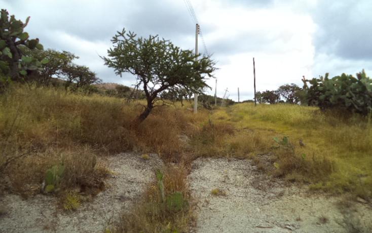Foto de terreno habitacional en venta en  , praderas, tepeji del r?o de ocampo, hidalgo, 1446301 No. 05