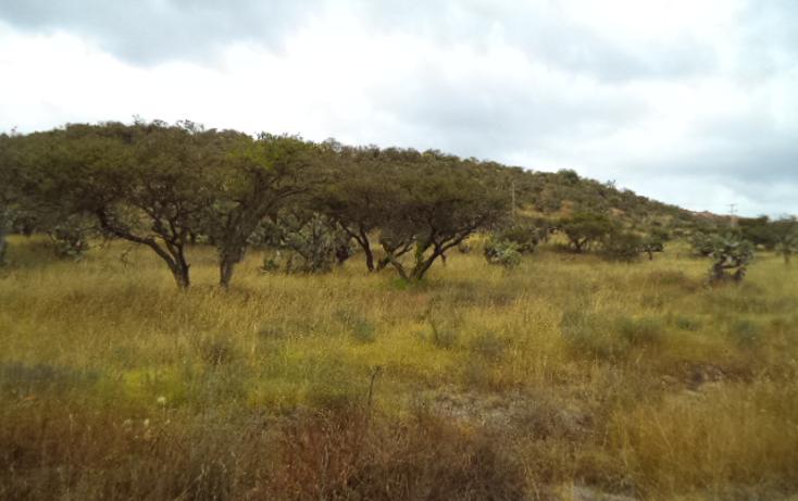 Foto de terreno habitacional en venta en  , praderas, tepeji del río de ocampo, hidalgo, 1446301 No. 06
