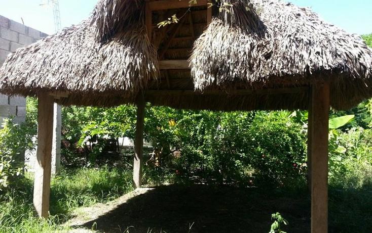 Foto de casa en venta en  , praxedis balboa, gonzález, tamaulipas, 1188025 No. 05