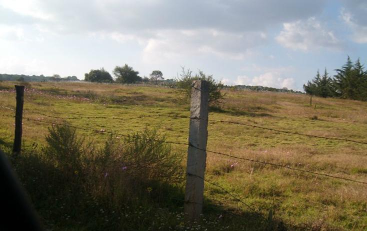 Foto de terreno habitacional en venta en predio denominado los cedros , san josé ocotillos, huasca de ocampo, hidalgo, 307935 No. 02