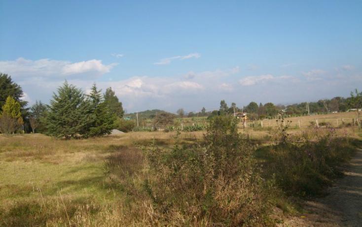 Foto de terreno habitacional en venta en predio denominado los cedros , san josé ocotillos, huasca de ocampo, hidalgo, 307935 No. 03
