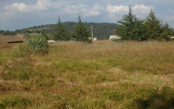 Foto de terreno habitacional en venta en predio denominado los cedros , san josé ocotillos, huasca de ocampo, hidalgo, 307935 No. 05