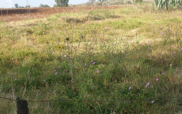 Foto de terreno habitacional en venta en predio denominado los cedros , san josé ocotillos, huasca de ocampo, hidalgo, 307935 No. 07