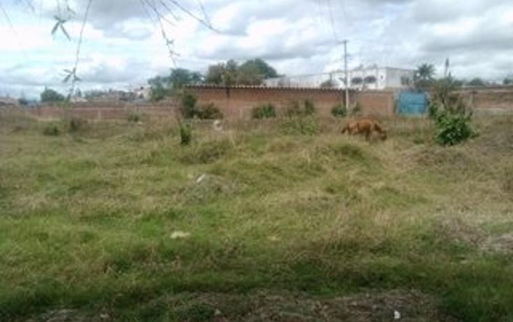 Foto de terreno habitacional en venta en  , guadalupe, tala, jalisco, 1715282 No. 05