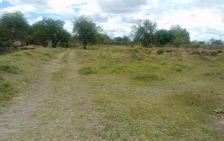 Foto de terreno habitacional en venta en  , guadalupe, tala, jalisco, 1715282 No. 07
