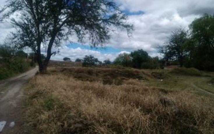 Foto de terreno habitacional en venta en predio el guamuchil 00, guadalupe, tala, jalisco, 1715282 no 14