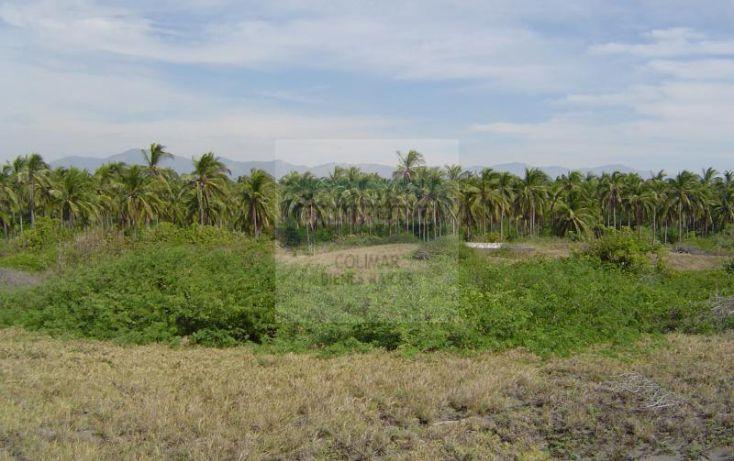 Foto de terreno habitacional en venta en predio el volantn 12, la playita, manzanillo, colima, 1653041 no 02