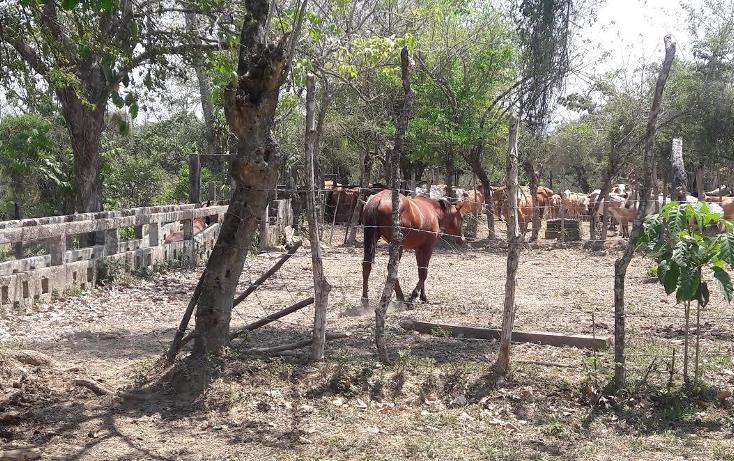 Foto de rancho en venta en predio rústico denominado