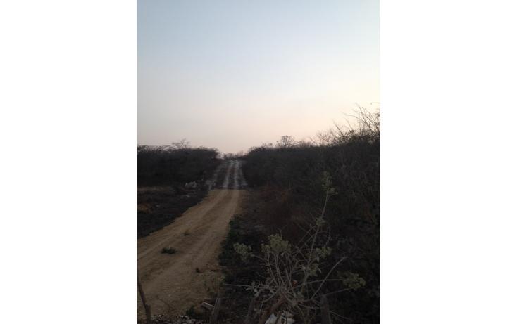 Foto de terreno habitacional en venta en predio rústico el mirador, fracción v , el mirador, berriozábal, chiapas, 1847606 No. 02