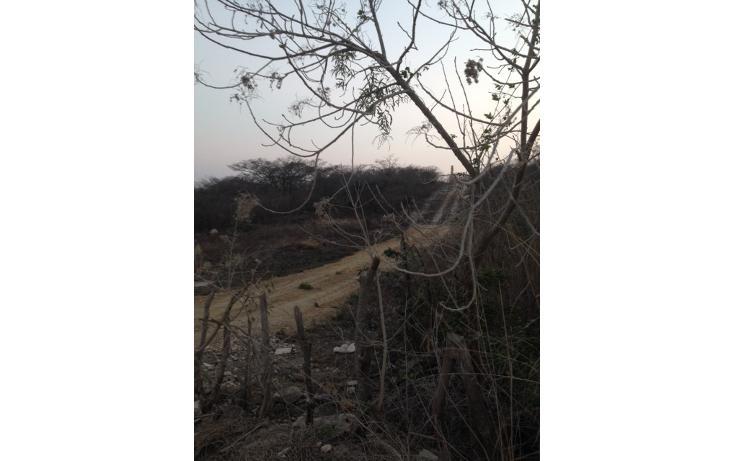 Foto de terreno habitacional en venta en predio rústico el mirador, fracción v , el mirador, berriozábal, chiapas, 1847606 No. 04