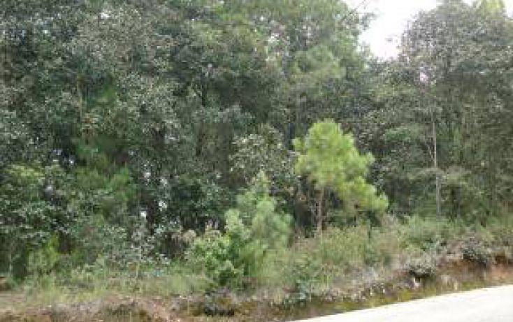 Foto de terreno habitacional en venta en predio rústico las flores sn, san felipe ecatepec, san cristóbal de las casas, chiapas, 1715840 no 02