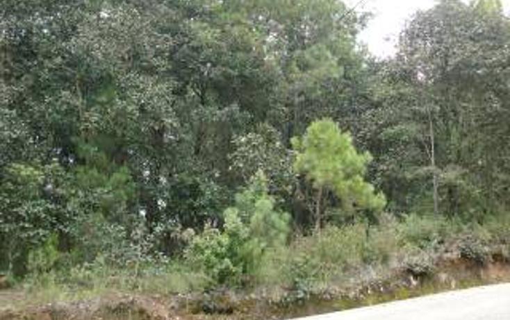 Foto de terreno habitacional en venta en  , san felipe ecatepec, san cristóbal de las casas, chiapas, 1715840 No. 02