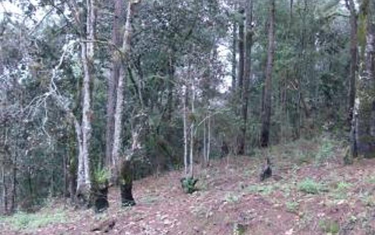 Foto de terreno habitacional en venta en  , san felipe ecatepec, san cristóbal de las casas, chiapas, 1715840 No. 07