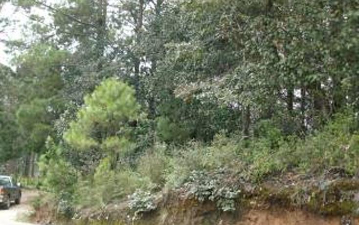 Foto de terreno habitacional en venta en predio rústico las flores s/n , san felipe ecatepec, san cristóbal de las casas, chiapas, 1715840 No. 09