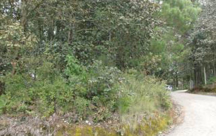 Foto de terreno habitacional en venta en predio rústico las flores sn, san felipe ecatepec, san cristóbal de las casas, chiapas, 1715840 no 10