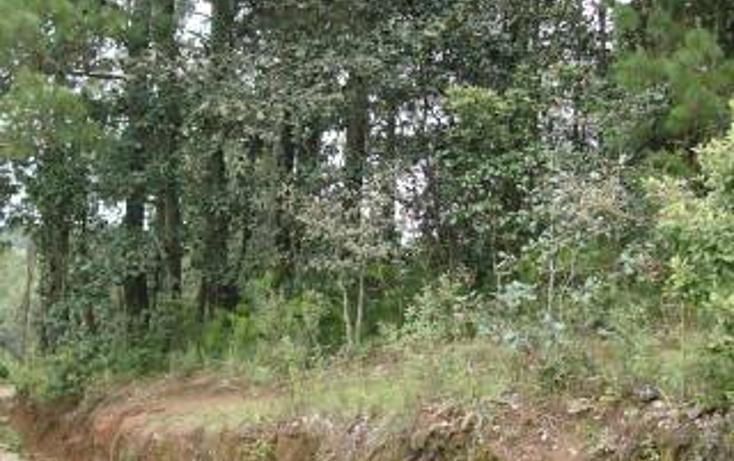Foto de terreno habitacional en venta en  , san felipe ecatepec, san cristóbal de las casas, chiapas, 1715840 No. 11