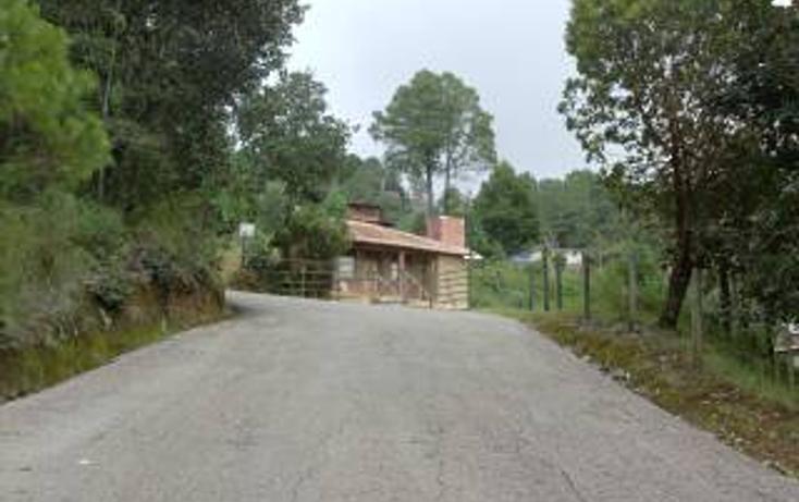 Foto de terreno habitacional en venta en predio rústico las flores s/n , san felipe ecatepec, san cristóbal de las casas, chiapas, 1715840 No. 15